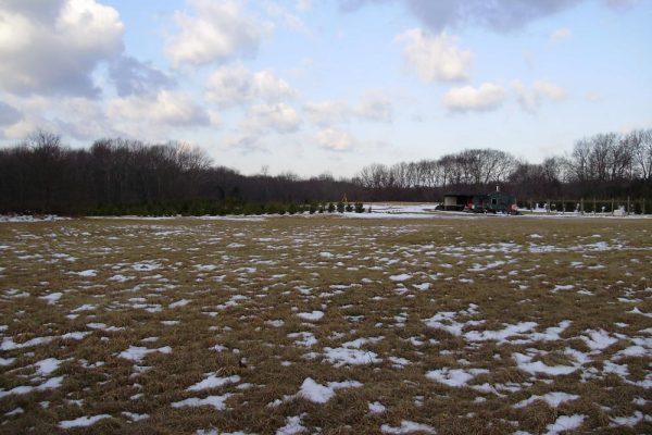 Grandview-Farm-WS-2